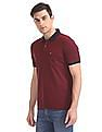 Arrow Sports Patterned Knit Tipped Polo Shirt