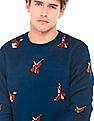 Flying Machine Crew Neck Patterned Knit Sweater